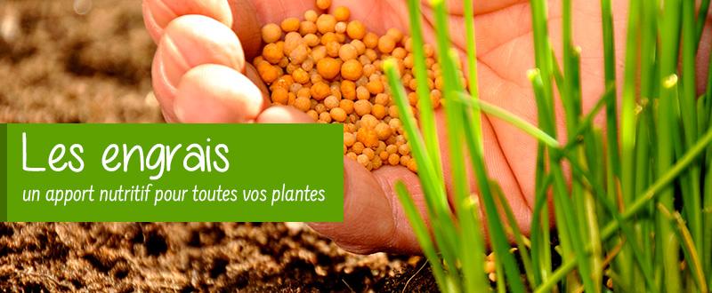 Les engrais pour vos plantes