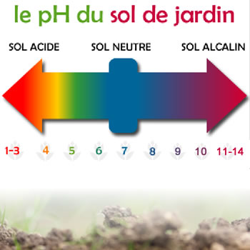 pH du sol de jardin