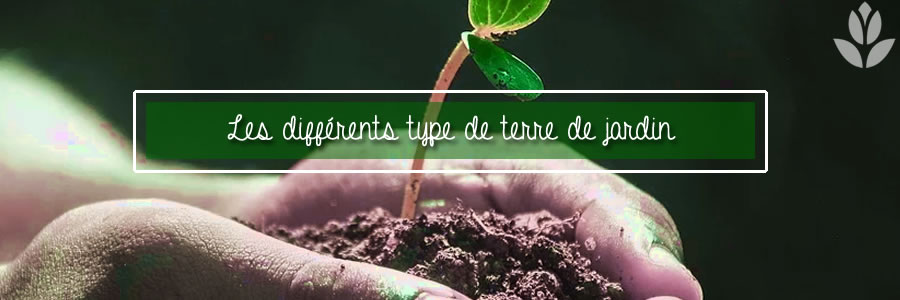 les différents types de terre du jardin