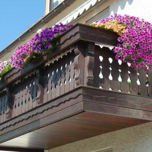 plantes sur balcon