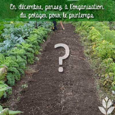 organisation du potager en décembre