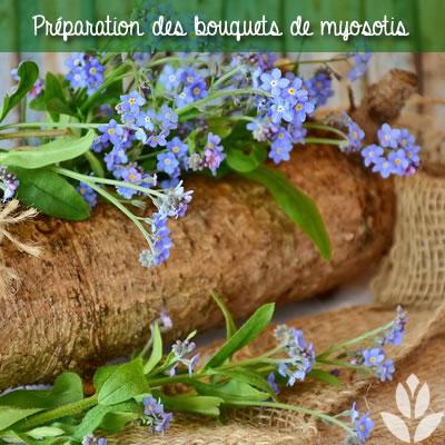 prpéaration des bouquets de Myosotis