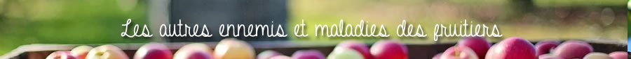 maladies des fruitiers