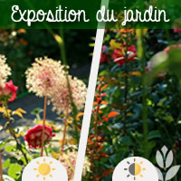 l'exposition du jardin
