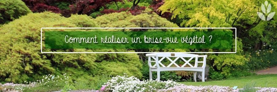 Brise Vue Vegetal Quelles Plantes Et Arbres Choisir Conseil Jardin Willemse