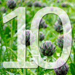 10 légumes perpétuels