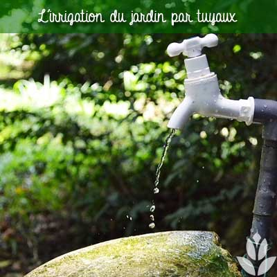 irrigation du jardin