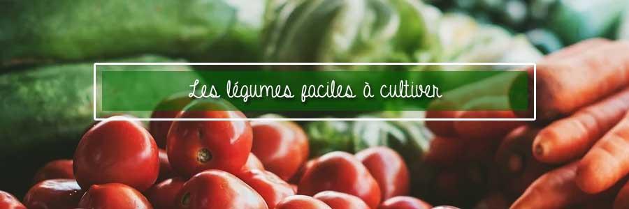 légumes faciles