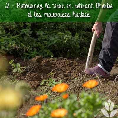 ritrez l'herbe pour concevoir votre massif