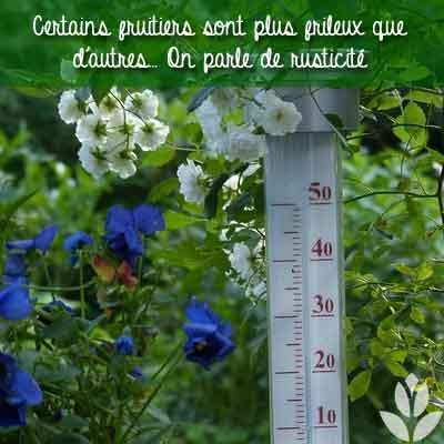 températures du jardin