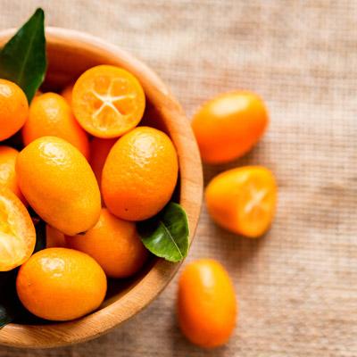 Kumquat Kumquats Fukushi Bol bois Table