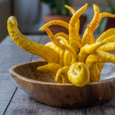Fruits Main de Bouddha Agrumes jaunes Panier Citrus medica