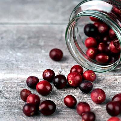 Canneberge Airelles Cranberry Baies rouges récoltées Bocal en verre Table